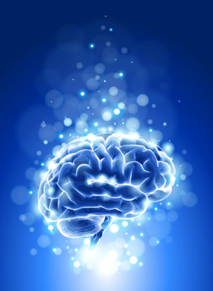 Hypnosis and The Brain